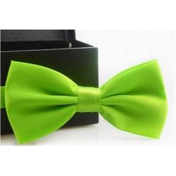 Corbata Michi - Color Verde - Sujetador Plástico - Doble Pliegue