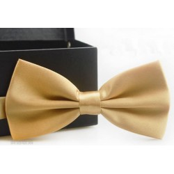 Corbata Michi - Color Champagne - Sujetador Plástico - Doble Pliegue